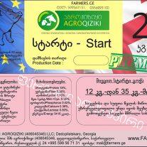 gowebis_kveba_starti_27272443003357772